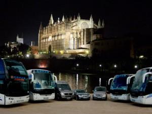 Porto de Palma de Mallorca, ônibus Catedral