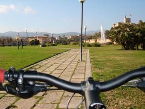 Palma em bicicleta